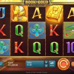 Hrací automat Book of Gold: Double Chance